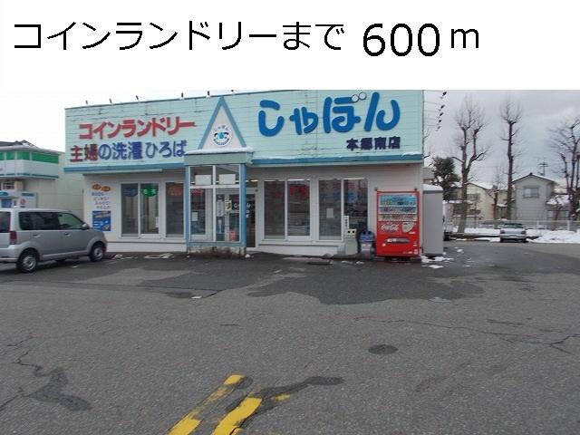 物件番号: 1110309901 ヴィラ・ノールB  富山市太田 1LDK アパート 画像16