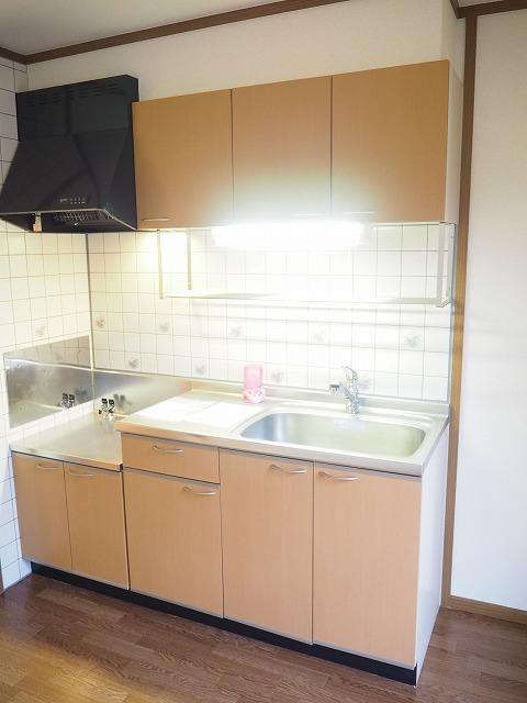 物件番号: 1110310152 ブルーイゾラ 富山市赤田 2DK アパート 写真3