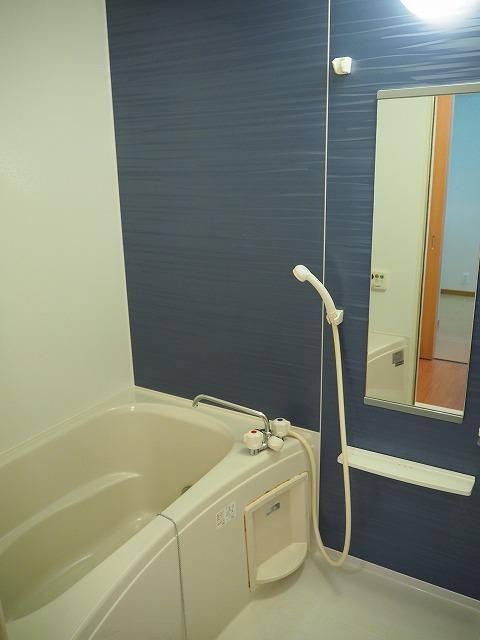 物件番号: 1110309507 プラシードT・Ⅱ  富山市高屋敷 2LDK アパート 画像3