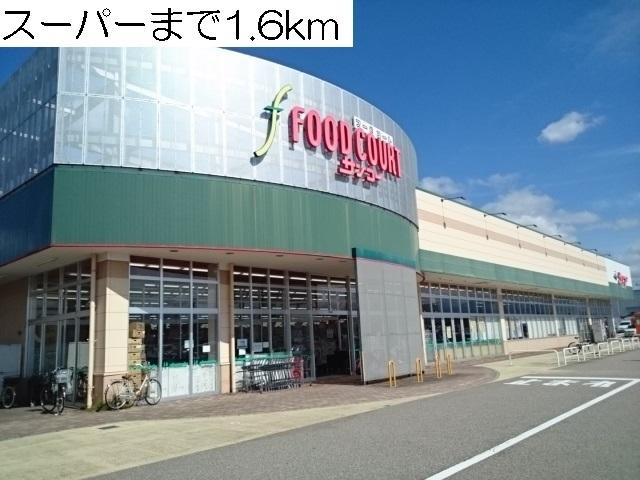 物件番号: 1110309677 リトル・スィーダーⅡ  富山市小杉 2LDK アパート 画像13